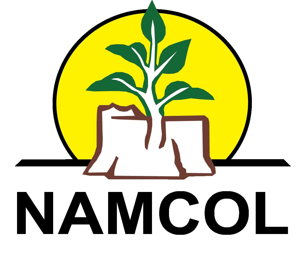 NAMCOL Logo
